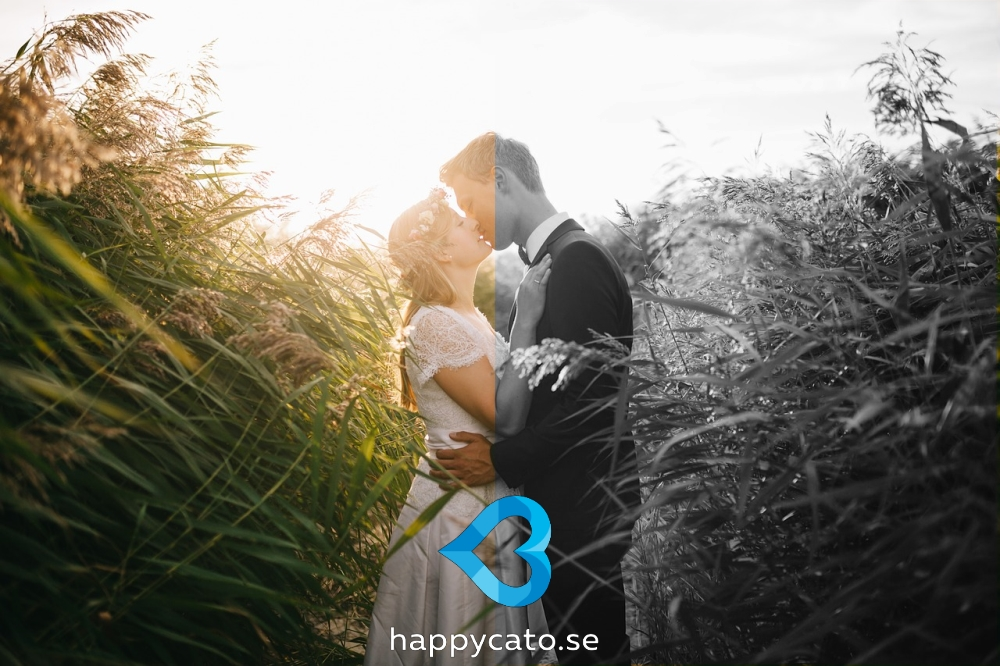 happiness the science behind your smile Smile it could make you happier  we smile because we are happy, and we frown because we are sad but does the causal arrow point in the other direction, too  the science of happiness 1.